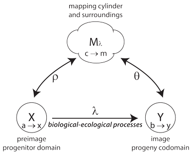 Figure 6: A generation as a mapping cylinder