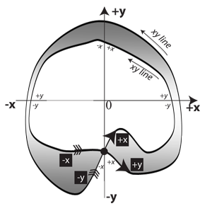 Figure 28: Mobius strip immersed in two dimensions